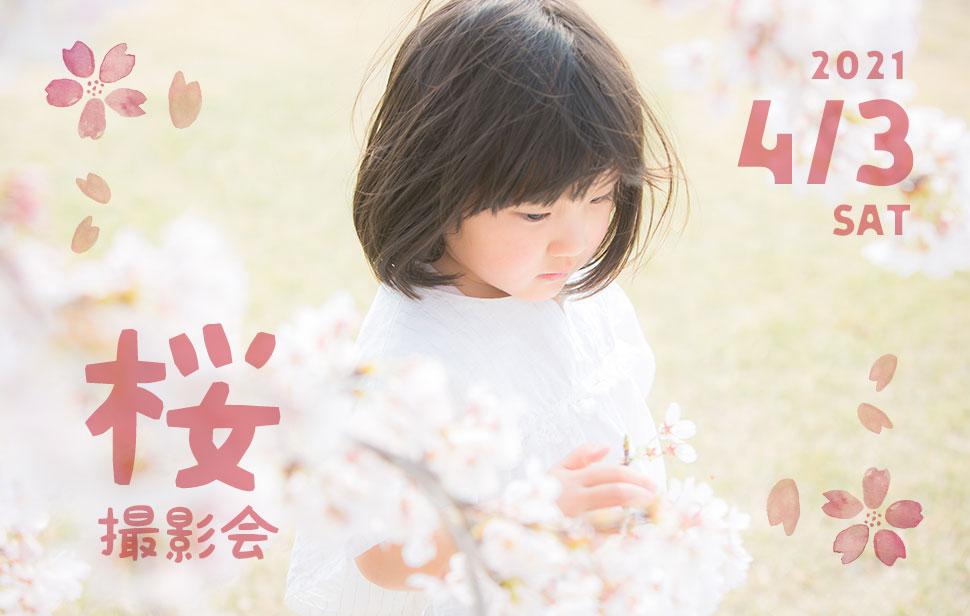 2021年桜撮影会のお知らせ